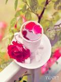 玫瑰花茶的功效与作用及禁忌 常喝不但祛痘还养颜